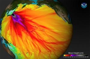 A pesar de que el impacto inmediato de un tsunami es hacia la costa adyacente donde ocurrió el hundimiento o levantamiento de la corteza del océano.