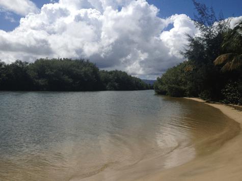 Estuario del Río Espíritu Santo